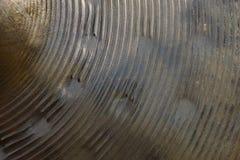 La textura de la mano de bronce muy usada martilló el platillo del hihat fotos de archivo