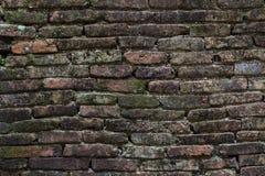 La textura de la pared de piedra vieja cubrió el musgo verde Fotos de archivo libres de regalías