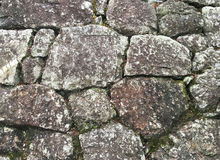 La textura de la pared de piedra vieja cubrió el musgo verde Imagen de archivo libre de regalías
