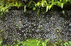 La textura de la pared de piedra vieja cubrió el musgo verde en Indonesia Foto de archivo
