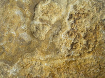 La textura de la piedra áspera Foto de archivo libre de regalías