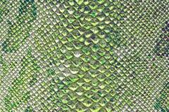 La textura de la piel de serpiente Foto de archivo