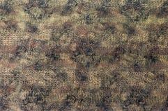La textura de la piel del cocodrilo Imagen de archivo libre de regalías