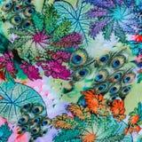 La textura de la tela de la impresión rayaron la pluma del pavo real y natural Fotos de archivo libres de regalías