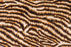 La textura de la tela raya el tigre imagen de archivo libre de regalías