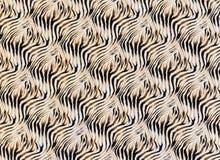 La textura de la tela raya la cebra Fotografía de archivo libre de regalías