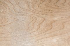 La textura de la madera contrachapada natural del abedul, la superficie de la madera de construcción es no tratada, mucha fibra y Imagen de archivo
