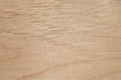 La textura de la madera contrachapada natural del abedul, la superficie de la madera se ha frotado con papel de lija y se ha rasg Fotografía de archivo