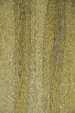 La textura de la madera natural Fondo verde foto de archivo