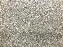 La textura de la plata gris hermosa escala la hoja brillante Los antecedentes fotografía de archivo