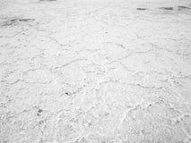 La textura de la superficie del blanco del lago de sal imagenes de archivo