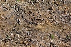 La textura de la tierra, visi?n superior, hierba crece imagen de archivo libre de regalías