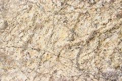 La textura de una piedra Foto de archivo libre de regalías