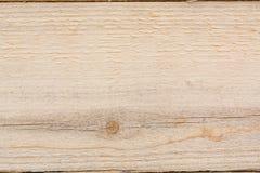 La textura del árbol Un árbol ligero en una sección La textura del pino Madera del fondo de un árbol Imágenes de archivo libres de regalías
