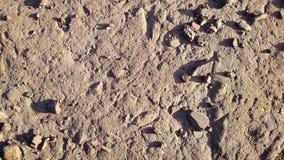 La textura del camino con grava Imagenes de archivo