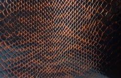 La textura del cuero Fotos de archivo libres de regalías