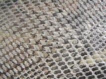 La textura del cuero Fotos de archivo