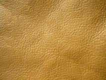 La textura del cuero Imagen de archivo libre de regalías