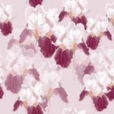 La textura del diafragma Fotos de archivo libres de regalías