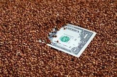 La textura del fondo de una pila grande de alforfón, en el medio de la cual usted ve una cuenta de un dólar de EE. UU. El concept Imagen de archivo