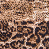 La textura del leopardo rayado de la tela Foto de archivo