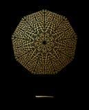 La textura del oro alinea la decoración en el fondo negro Modelo inconsútil horizontal Fotografía de archivo