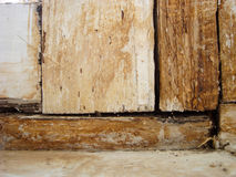 La textura del pino de madera viejo Imágenes de archivo libres de regalías