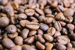 La textura hermosa de ricos deliciosos seleccionados recientemente asados broncea los granos fragantes naturales del cafeto, gran imágenes de archivo libres de regalías