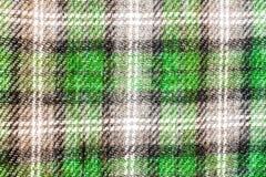 La textura, la impresión y el wale de la tela ponen verde el modelo Fotografía de archivo libre de regalías