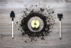 La textura llenada tierra de madera del rastrillo de la bifurcación de la bifurcación de la cuchara del plato del círculo del con Imagen de archivo libre de regalías