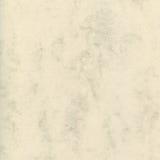 La textura natural del papel de mármol de la letra del arte decorativo, multa ligera texturizada manchó el modelo vacío en blanco Fotos de archivo