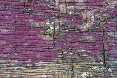 La textura rica de la madera resistida, con las grietas y el dolor de la peladura imagen de archivo