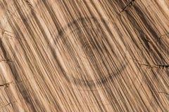 La texture d'une coupe d'arbre Photographie stock libre de droits