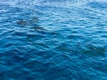 La texture de la belle eau salée azurée marine naturelle bleue polluée par les taches sales qui respecte non exemptes d'huile, ma photographie stock