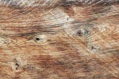 La texture de la coupe polie d'un arbre dans des tons bruns La coupe du panneau du bois scié Matériau de construction naturel Fu photographie stock