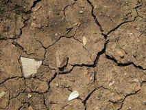 La texture de la terre sèche avec des fissures Photographie stock libre de droits