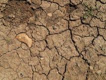 La texture de la terre sèche avec des fissures Images stock