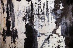 La texture de mur avec le plâtre et le lait de chaux criqués Photo libre de droits