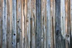 La texture des panneaux en bois. Photos stock