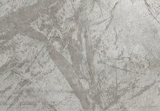 La texture du béton Photo libre de droits