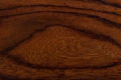 La texture du bois du vieil arbre Photo libre de droits