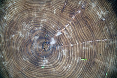 La texture du bois pour le fond image libre de droits