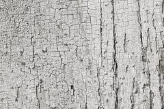 La texture du panneau en bois de grange s'est fanée des restes de vieille peinture photos libres de droits