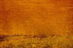 La texture du papier sur un fond d'herbe Photos stock
