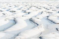 La texture du plan rapproché à marée basse de plage photos stock