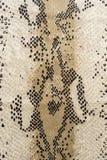 La texture du tissu barre le cuir de serpent Photo libre de droits