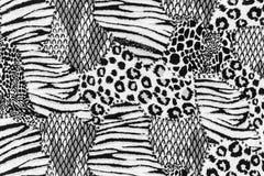 La texture du tissu barre le léopard Images stock