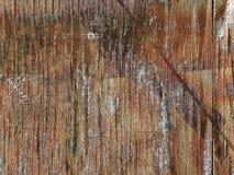 La texture du vieil arbre est brun-rougeâtre image libre de droits