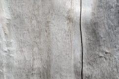 La texture du vieux gris en bois Image stock