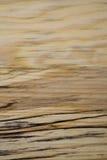 La texture en bois de bouleau avec l'obscurité strie le plan rapproché Images stock